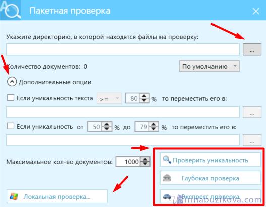 Пакетная проверка AntiPlagiarism.NET